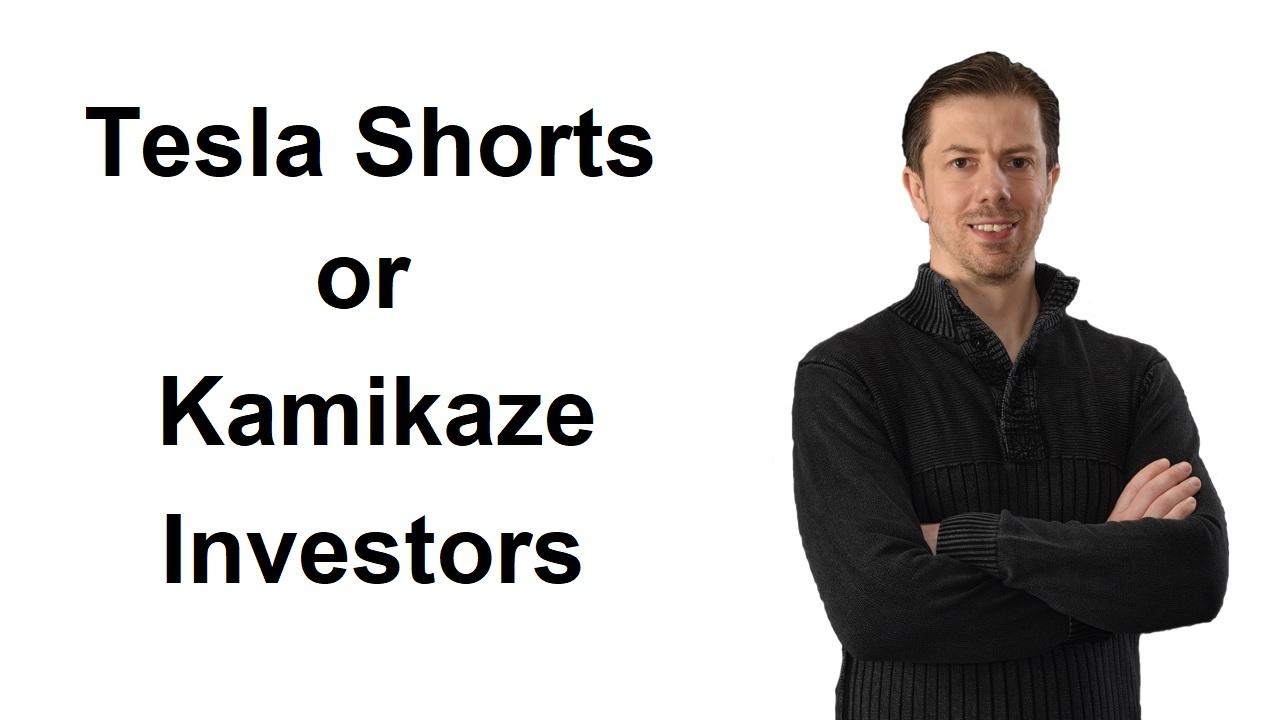 Tesla Shorts or Kamikaze Investors